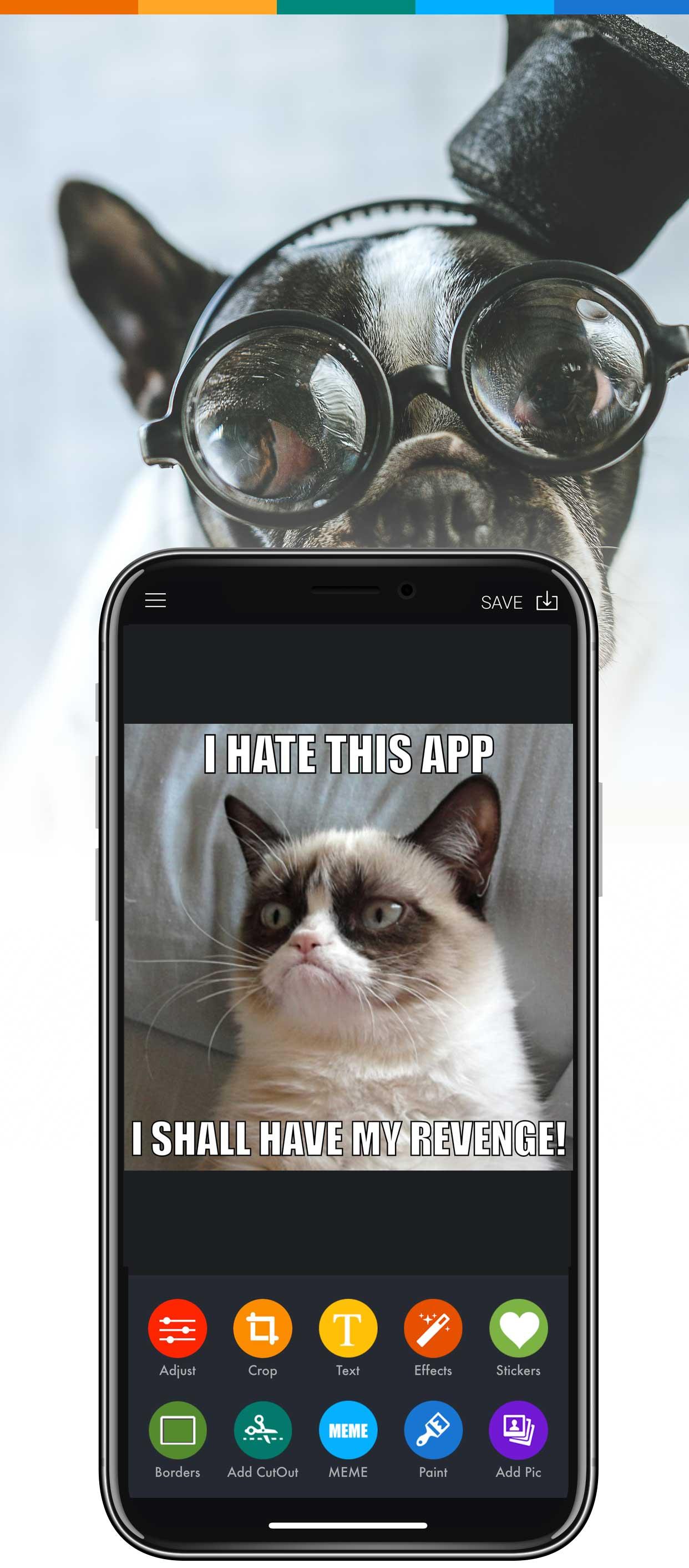 Meme Maker App Create Memes Online